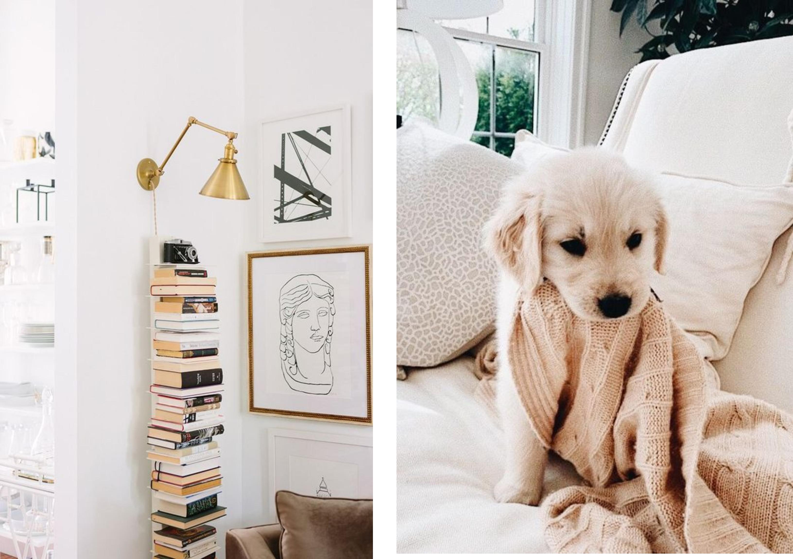 deka, knihy